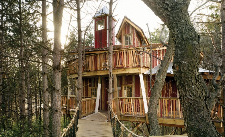 Epic campus one tree house