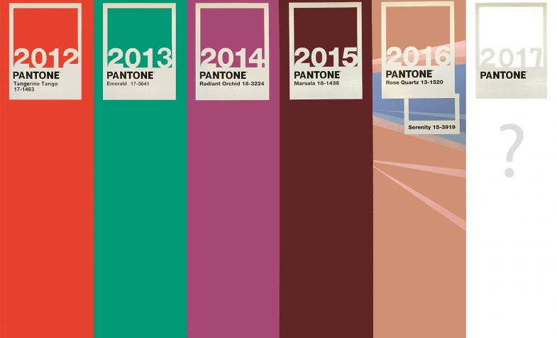 Colors of the year graphic